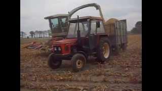 getlinkyoutube.com-Kiszonka z kukurydzy   w   Wielkopolsce  2015