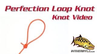 getlinkyoutube.com-Perfection Loop Knot - Tying Video - Fly Fishing Knots