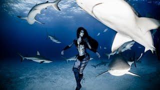 getlinkyoutube.com-Real Life Mermaid & Underwater Performance Artist - Hannah Fraser & Ocean Animals - 'Emanation'