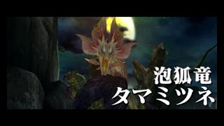 【MHX】タマミツネ狩猟【実況】