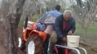 getlinkyoutube.com-Φύτεμα πατάτας με KUBOTA στον Καρδαμα Ηλειας  2014(πατεντα)