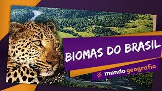 getlinkyoutube.com-Biomas do Brasil - Mundo Geografia - ENEM
