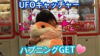getlinkyoutube.com-UFOキャッチャー まさかの故障でハムスターGET♪ デカクレ うれしいハプニング!