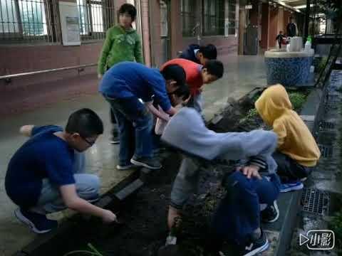 食農課程-松山國小