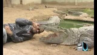 getlinkyoutube.com-Waqar zaka's Death Defying Stunt is here