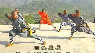 getlinkyoutube.com-Shaolin big flood kung fu (da hong quan)