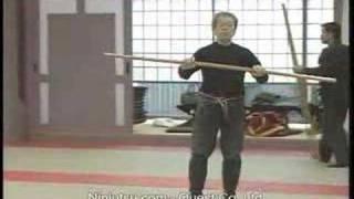 getlinkyoutube.com-Hatsumi Bujinkan Daikomyosai 1993