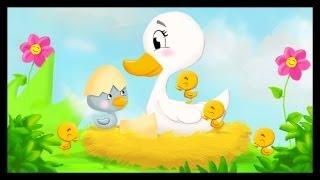 getlinkyoutube.com-Histoire pour enfants : Le vilain petit canard