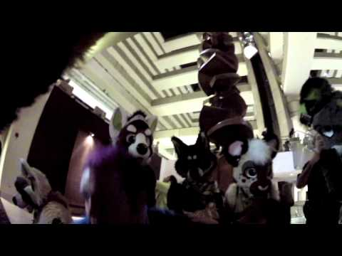 Havik's Midwest Furfest 2012 Video