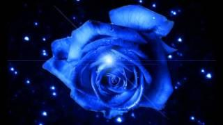 getlinkyoutube.com-太鼓の達人 Blue Rose Ruin 音源