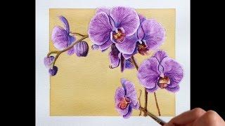 getlinkyoutube.com-Watercolor Pencils Time Lapse
