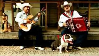 getlinkyoutube.com-Los Dos De Nuevo Leon - No Le Pegues A Ese Perro