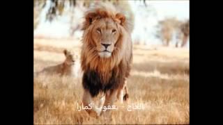 kole yacouba camara  20 الحاج - يعقوب كمارا - رحمه الله - من جمهورية مالي width=