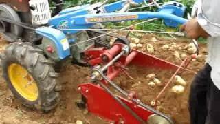 potato harvester viedo.MPG