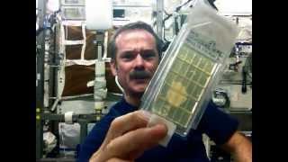 getlinkyoutube.com-Hadfield demonstrates Microbial Air Sampling on the ISS