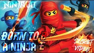 "getlinkyoutube.com-LEGO NINJAGO Sneak Peek The Fold ""Born To Be A Ninja"""