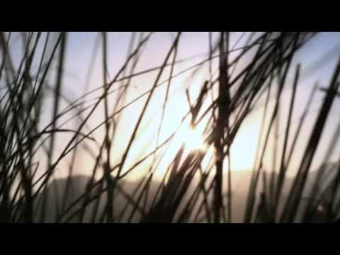 """Nestle Philippines Kasambuhay Habambuhay Short Film Anthology: """"Sali-Salita"""""""