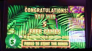 getlinkyoutube.com-Jungle Riches slot machine, Malfunction Voids Your Win?