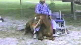 getlinkyoutube.com-handicap horseback rider
