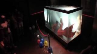 """getlinkyoutube.com-""""Mermaid Melissa"""" in Underwater tank performing live shows"""