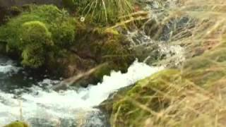 DREFF - Trailer Valle Nuevo: Madres de las Aguas
