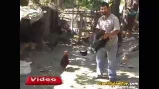 getlinkyoutube.com-Sevdiği Tavuğu Delicesine Kıskanan Horoz