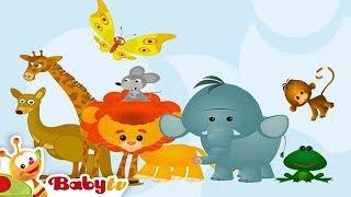 getlinkyoutube.com-Learning Wild Animal Sounds and Names for Kids & Toddlers | BabyTV