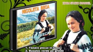 COLAJ CELE MAI FRUMOSAE MELODII - NICOLETA BECA, ZOOM STUDIO