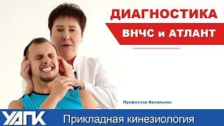 getlinkyoutube.com-Прикладная кинезиология. Височнонижнечелюстной сустав. Подвывих атланта. Семинар Васильевой.
