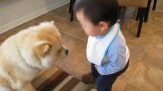 getlinkyoutube.com-Baby making interesting conversation with dog