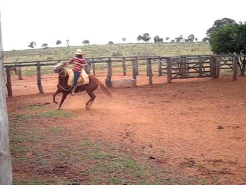 video egua alaza