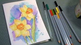 getlinkyoutube.com-daffodil watercolor pencil tutorial