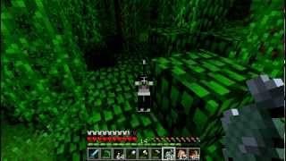 getlinkyoutube.com-Let's Play Minecraft - dżungla, oceloty i cała reszta ;)