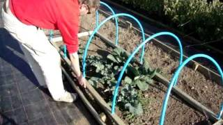 getlinkyoutube.com-How to make a Portable Netted Hooped Crop & Plant Protecting Cloche.Keeps out Birds & Butterflies