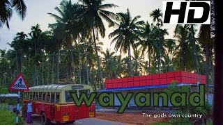 getlinkyoutube.com-Wayanad , Kerala - The God's Own Country  HD