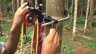 getlinkyoutube.com-ARECANUT TREE HARVESTING & SPRAYING DEVICE