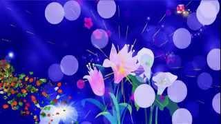 getlinkyoutube.com-футаж  Блеск,сияние,цветы
