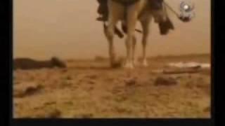 getlinkyoutube.com-Imam Abbas and Imam Ali video