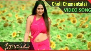Seetha Ramudu Movie ||  Cheli Chemantalai Video Song || Shivaji, Ankita