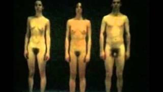 getlinkyoutube.com-A+B=X (1997) by Gilles Jobin