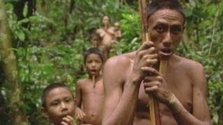 getlinkyoutube.com-Aislados: Tribu Zo'é (Parte 1) /  Isolated: The Zo'é tribe (part 1)