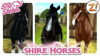 getlinkyoutube.com-Star Stable [SSO]: Shire Horse [Update 07.10.2015] | Let's Play ♥ [GER/DEU]