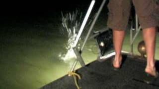getlinkyoutube.com-Flounder Gigging