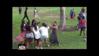 Fight at Rowley Park on the 4th of July 2013