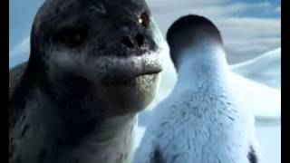 getlinkyoutube.com-Happy Feet Foca Leopardo