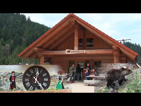 Home of the Bear! Sightseeing Tour in Germany - Blackforest (Cuckoo Clocks, houses, food and more)