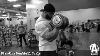 getlinkyoutube.com-The Animal Underground: Frank McGrath & Dorian Hamilton, Arms