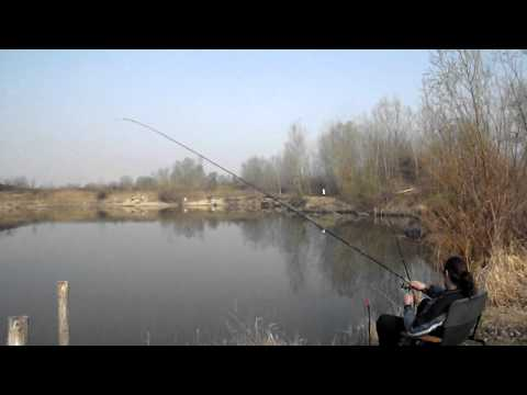 Prolećno pecanje babuški feeder ( Ribolov br. 295 )