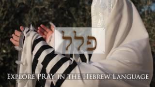 Hebrew Word Study - Pray (Numbers)