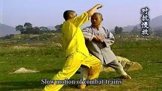 getlinkyoutube.com-Shaolin big flood kung fu (da hong quan) combat methods